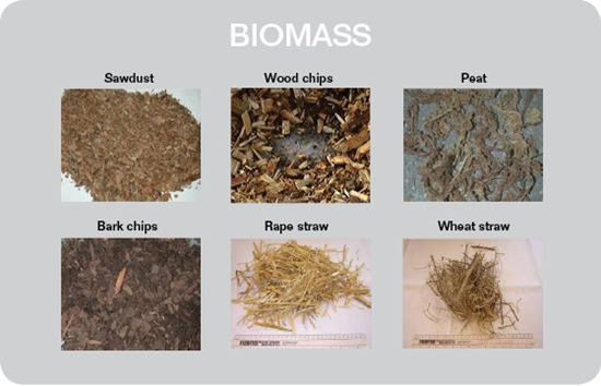 biomass fuel - photo #16